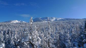 Vercors sous la neige