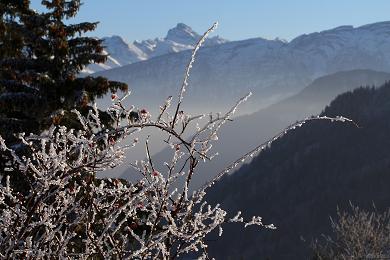 station ski Les Brasses