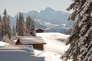 station ski Les Gets